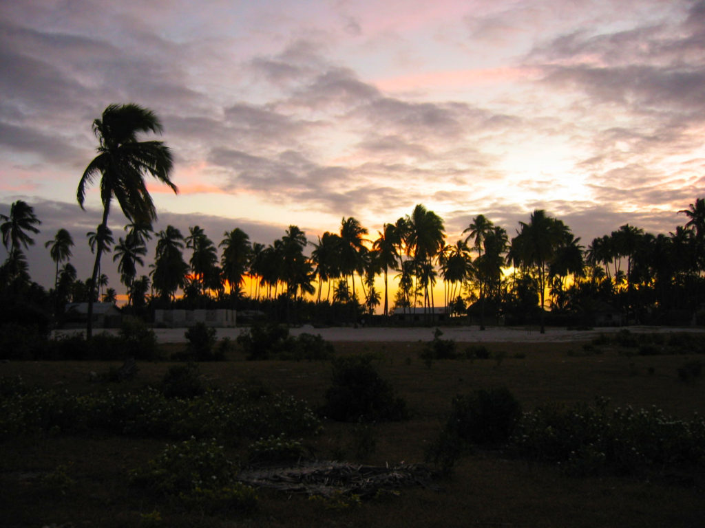 Jambiani, on the East Coast of Zanzibar. Sunset behind the palm trees