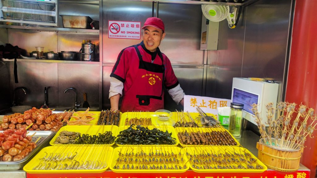 Wangfujing - scorpions, spiders, bats. Looking for exotic street food in China? This is it!