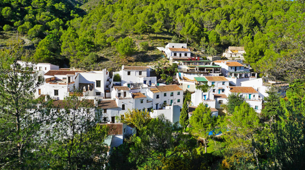 Acebuchal village - hidden in a steep vally behind Frigiliana. Their main attraction is one restaurant, called Bar Acebuchal, and it is well worth the visit!