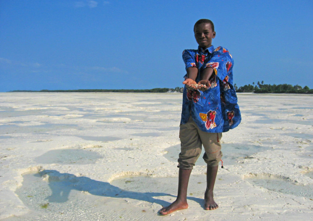 Jambiani – Boy picking shells on the beach during low tide