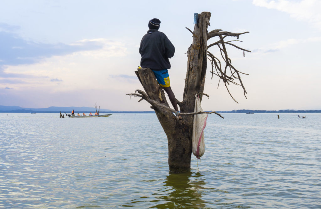 Lake Naivasha – Fisherman on a tree trunk in the water observing a boat full of tourists