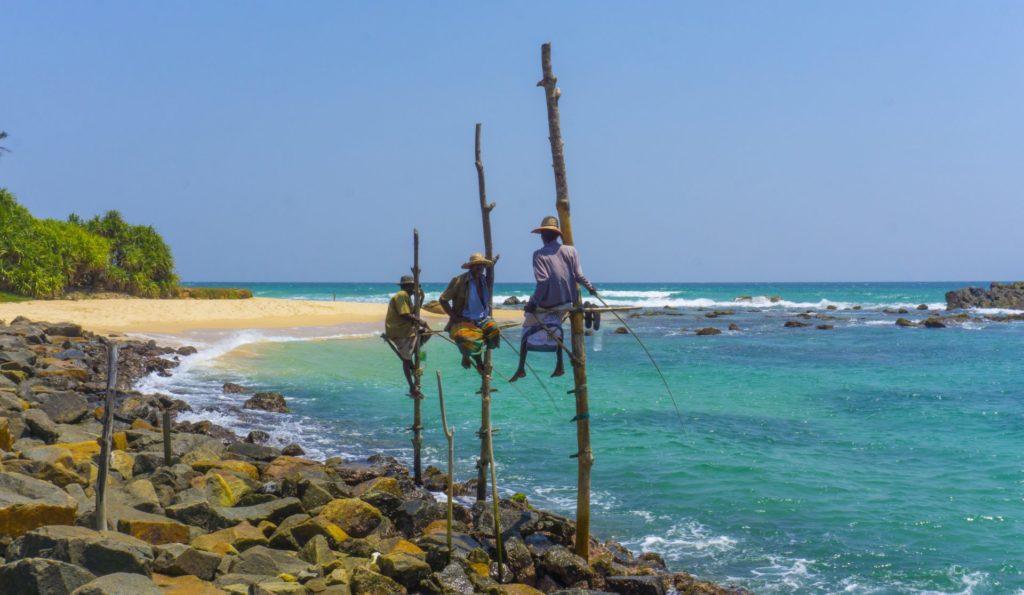 Stilt fishermen in Koggala, Sri Lanka